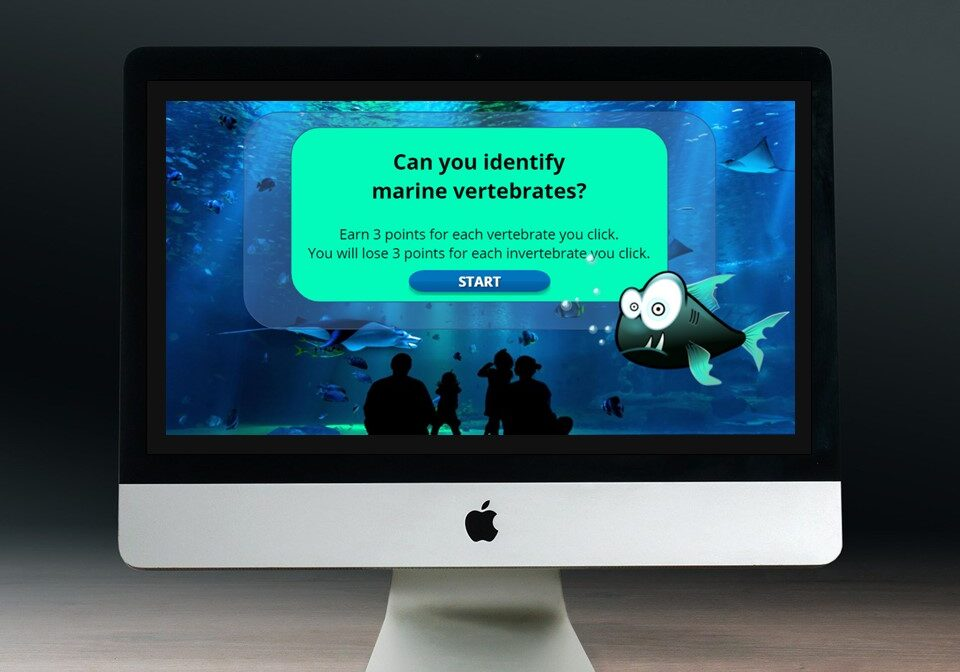 Start screen of eLearning game in computer monitor: Can you identify marine vertebrates